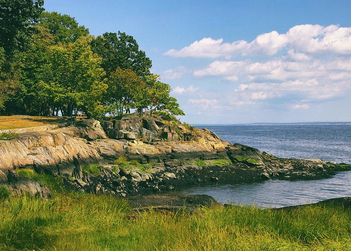 Larchmont Greeting Card featuring the photograph Manor Park by Jessica Jenney