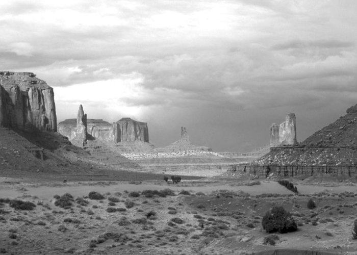 Monument Valley Greeting Card featuring the photograph Monument Valley Afternoon by Troy Montemayor