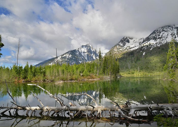 Grand Teton National Park Greeting Card featuring the photograph Morning Reflection On String Lake by Ray Mathis