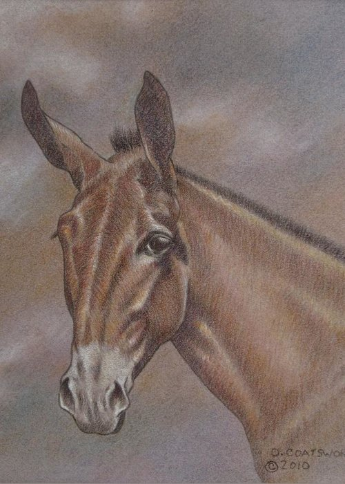 Greeting Card featuring the pastel Mule Head by Dorothy Coatsworth