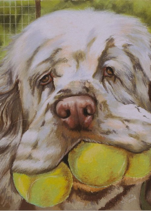 Clumber Spaniel Greeting Card featuring the pastel Mumbles by Barbara Keith