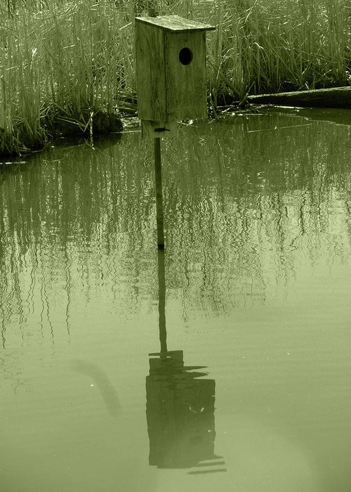 Nesting Box Greeting Card featuring the photograph Nesting Box In A Marsh by Robert Hamm