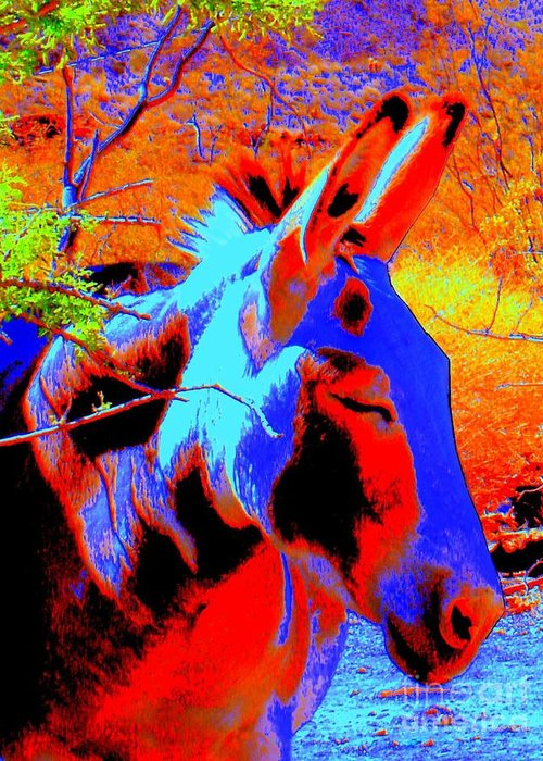 Burro Greeting Card featuring the photograph Oatman Burro by Lessandra Grimley