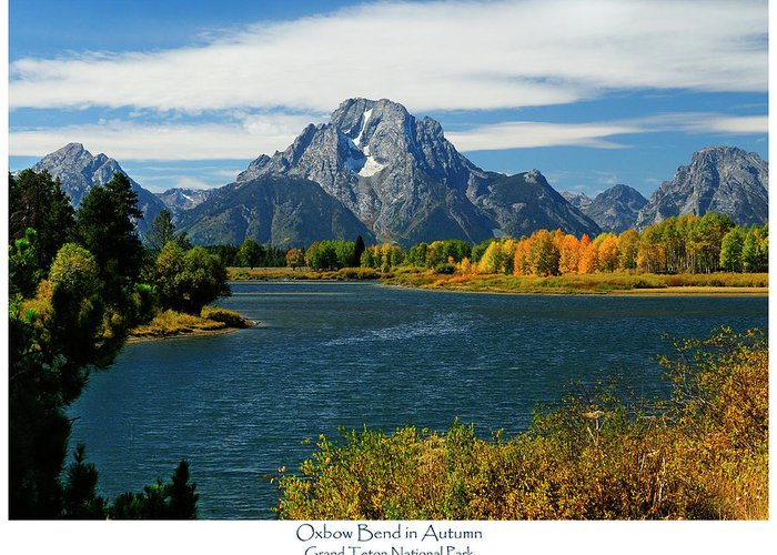Mt. Moran Greeting Card featuring the photograph Oxbow Bend In Autumn by Greg Norrell