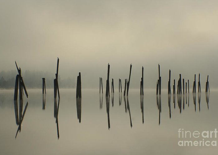 Tranquility Greeting Card featuring the photograph Pend Oreille Reflections by Idaho Scenic Images Linda Lantzy