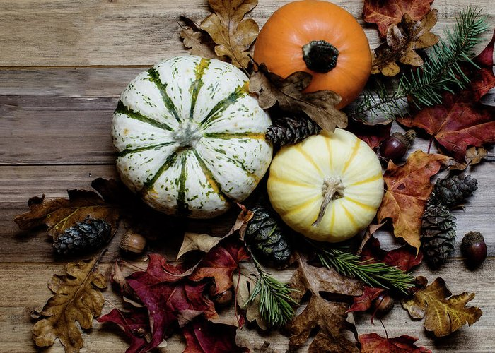 Thanksgiving Greeting Card featuring the photograph Pumpkins 1 by Rebecca Cozart