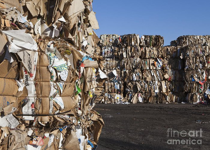 Abundance Greeting Card featuring the photograph Recycling Facility by Paul Edmondson