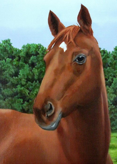 Horse Greeting Card featuring the painting Retired Racer by Sandra Chase