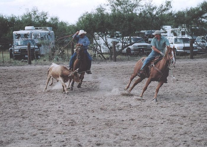 Horses Greeting Card featuring the photograph Roping Event 6 by Wendell Baggett