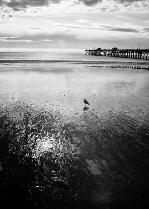 Infra Red Greeting Card featuring the photograph San Clemente Pier by G Wigler