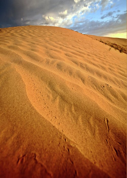 Sand Dune Greeting Card featuring the digital art Sand Dune At Great Sand Hills In Scenic Saskatchewan by Mark Duffy