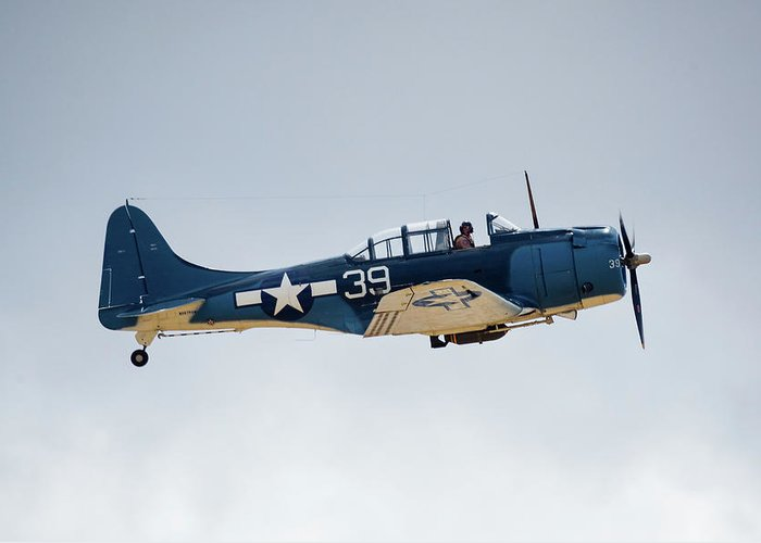 Dauntless Greeting Card featuring the photograph Sbd Dauntless by Brian Knott Photography