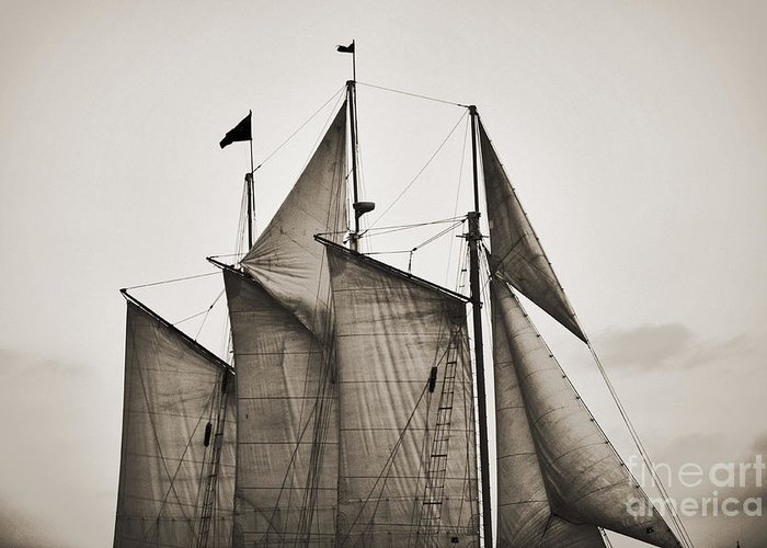 Tall Ship Greeting Card featuring the photograph Schooner Pride Tall Ship Charleston Sc by Dustin K Ryan