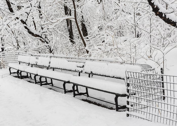 Central Park Greeting Card featuring the photograph Snow In Central Park Nyc by Susan Candelario