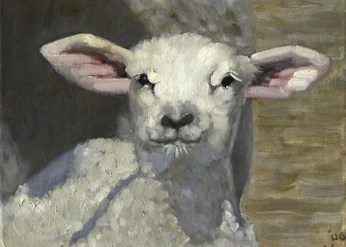 Sheep Greeting Card featuring the painting Spring Lamb by John Reynolds