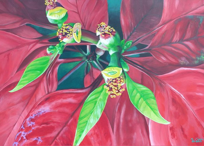 Poinsettia Greeting Card featuring the painting Still Thriving In May by Tammy Watt