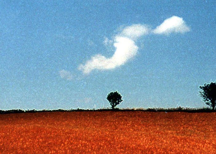 Summer Greeting Card featuring the photograph Summer Field With Two Trees 2 Ae2 by Lyle Crump