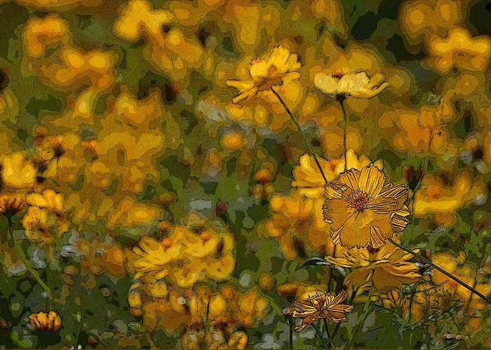 Yellow Greeting Card featuring the photograph Summer Flowers by Ed Zirkle