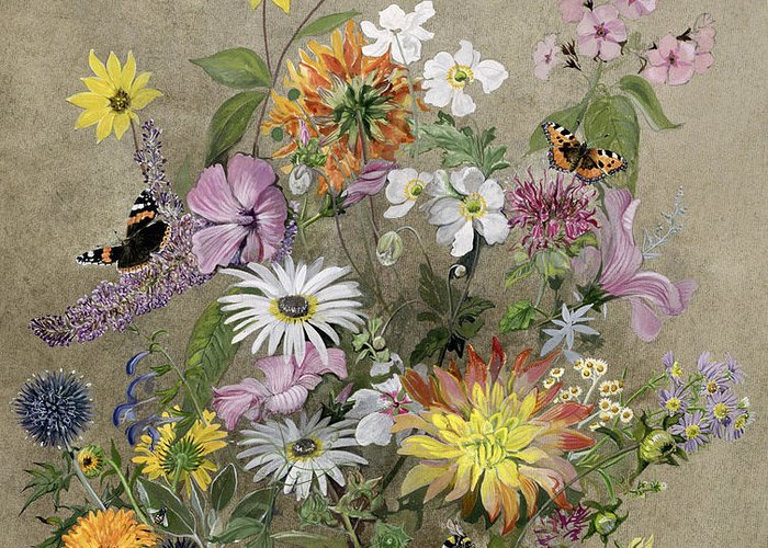 Red Admiral; Butterfly; Daisy; Sweet; Pea; Narcissus; Greeting Card featuring the painting Summer Flowers by John Gubbins