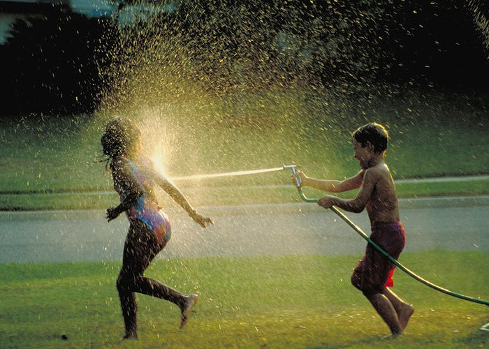 Hose Greeting Card featuring the photograph Summer Fun by Carl Purcell