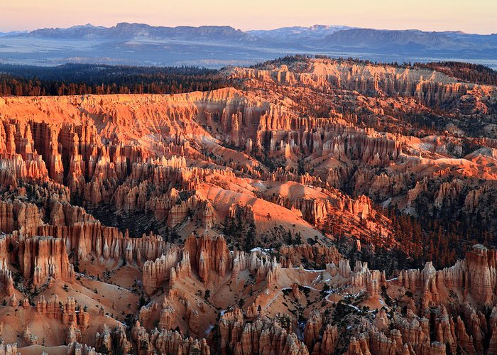 Bryce Greeting Card featuring the photograph Sunrise In Bryce Canyon by Pierre Leclerc Photography