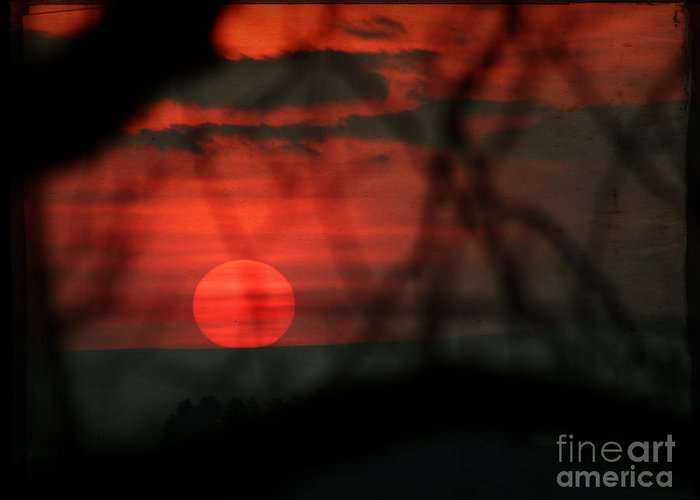 Sunset Greeting Card featuring the photograph Sunset by Angel Ciesniarska