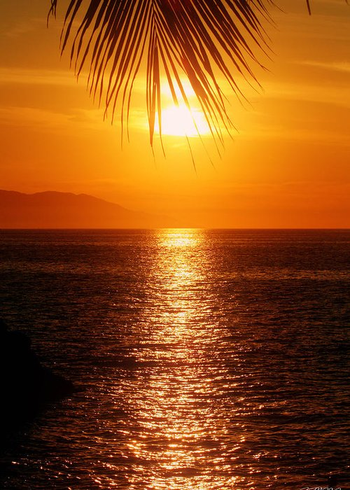 Puerto Vallarta Greeting Card featuring the photograph Sunset In The Frawn by Jason Blalock