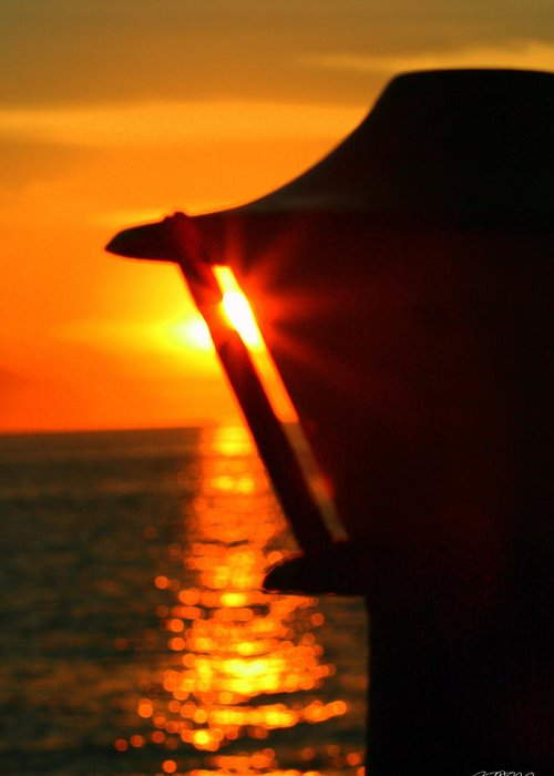 Puerto Vallarta Greeting Card featuring the photograph Sunset In The Light by Jason Blalock