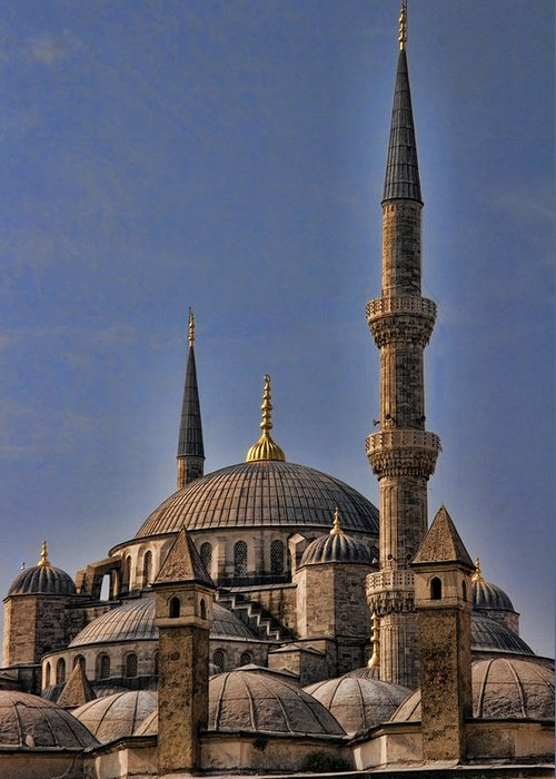 Turkey Greeting Card featuring the photograph The Blue Mosque In Istanbul Turkey by David Smith