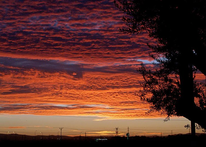 Sunrise Greeting Card featuring the photograph The Shortest Day Sunrise by Arik Baltinester