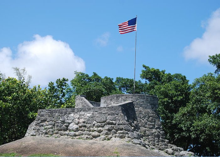 American Flag Greeting Card featuring the photograph The Stand by Rob Hans