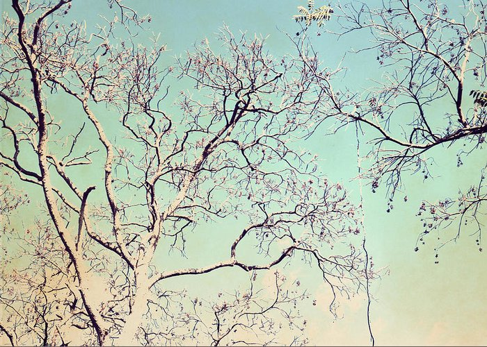 Tree Branches Reaching For Heaven Greeting Card featuring the photograph Tree Branches Reaching For Heaven by Patricia Awapara