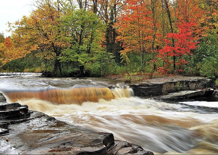 Michigan Greeting Card featuring the photograph Unnamed Falls by Michael Peychich