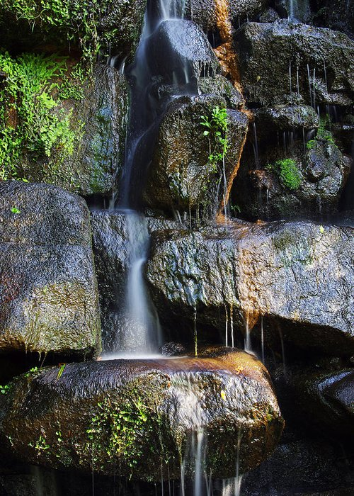 Asian Greeting Card featuring the photograph Waterfall by Carlos Caetano