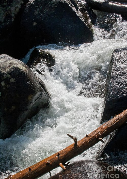Wild Basin Greeting Card featuring the photograph Wild Basin White Water by Brent Parks