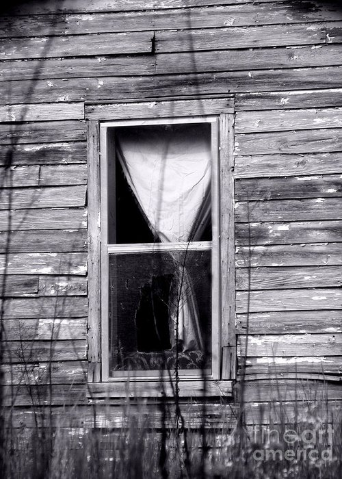 Windows Greeting Card featuring the photograph Window by Amanda Barcon