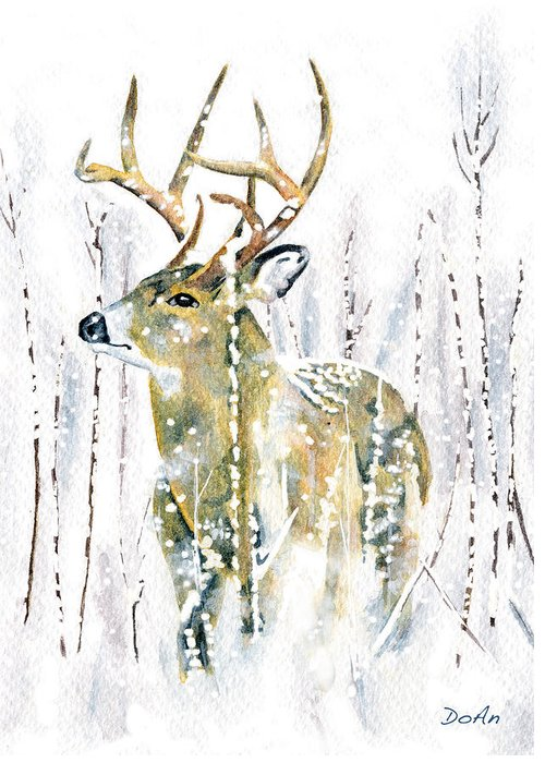 Stag Greeting Cards