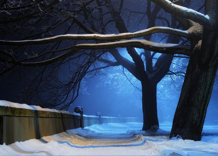 Winter Greeting Card featuring the digital art Winter by Zia Low