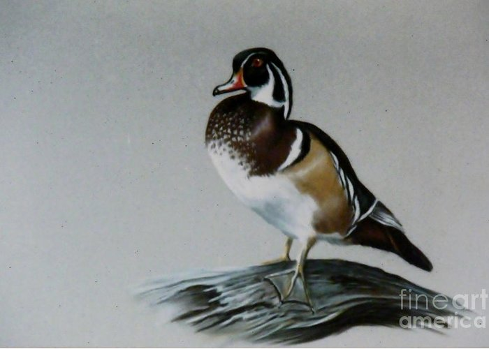 Duck Greeting Card featuring the painting Woodie by Lynne Parker
