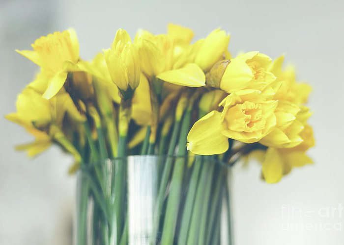 Yellow Greeting Card featuring the photograph Yellow Narcissuses Bouquet In A Glass Vase by Dvoevnore Photo