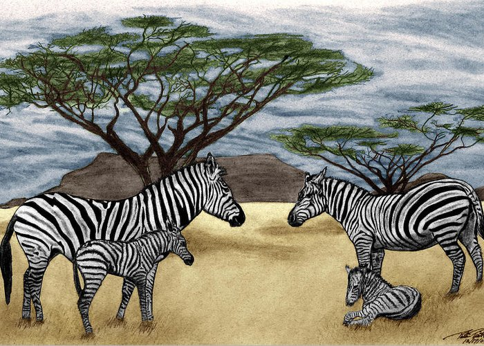 Zebra African Outback Greeting Card featuring the drawing Zebra African Outback by Peter Piatt
