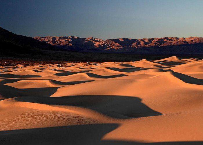 Death Valley Greeting Card featuring the photograph Mesquite Sand Dunes In Death Valley National Park 11 by Pierre Leclerc Photography
