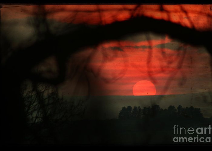 Sunset Greeting Card featuring the photograph The Sunset by Angel Ciesniarska