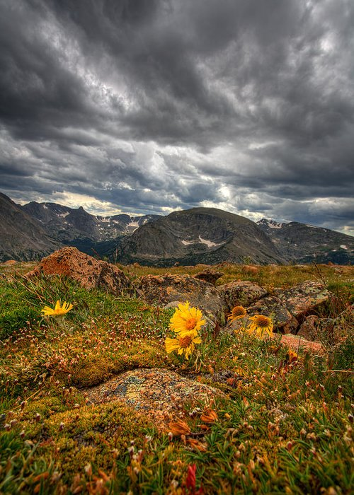 Clouds Greeting Card featuring the photograph 12000 Foot Flower by Peter Tellone
