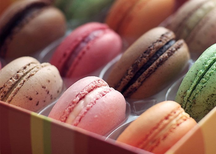 Sweets Cookies Macarons French Greeting Card featuring the photograph French Macaron Rainbow by Lisa Board