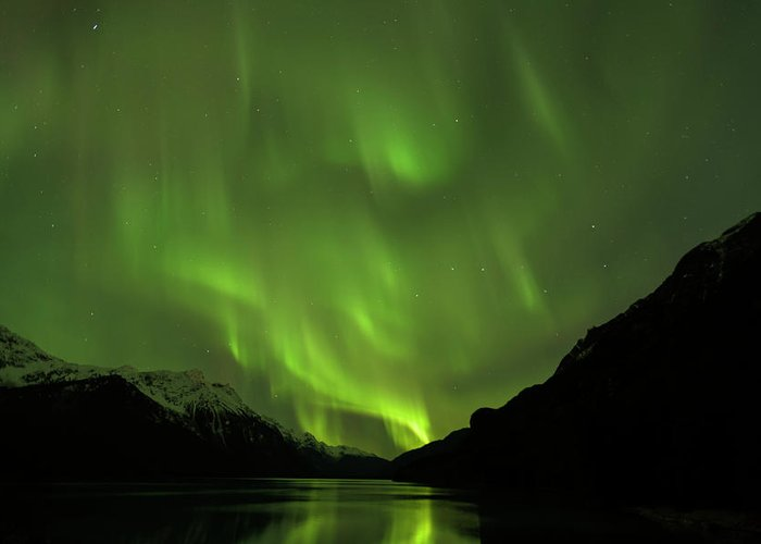 Alaska 2015 Greeting Card featuring the photograph Aurora Borealis by Donald Trimble