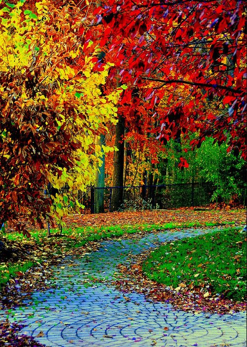 Lake View Greeting Card featuring the digital art Autumn Colors by Aron Chervin