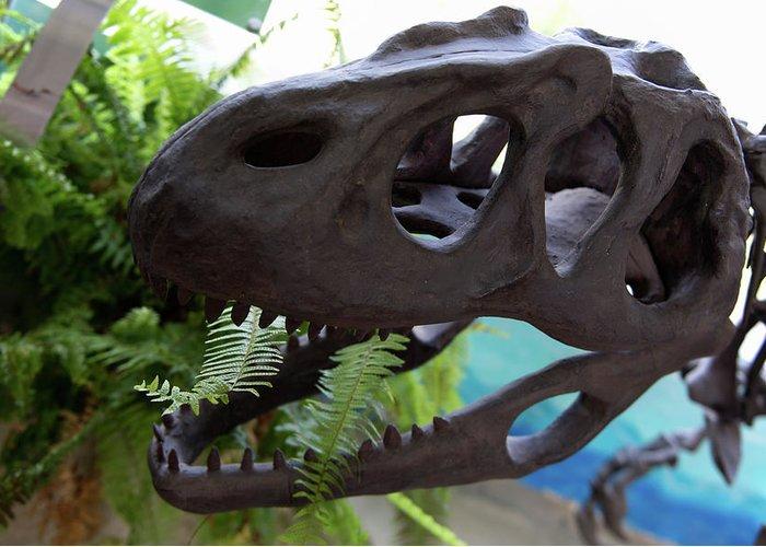 Centro De Investigaciones Paleontologicas Greeting Card featuring the digital art Centro De Investigaciones Paleontologicas by Carol Ailles
