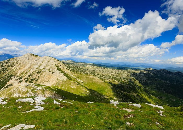 Pinus Mugo Greeting Card featuring the photograph Mountain Panorama, Italy by Davide Guidolin