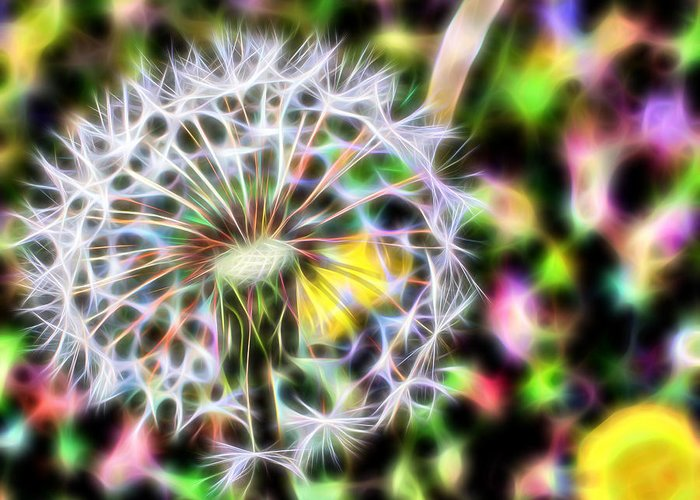 Flowers Greeting Card featuring the photograph Dandelion by Michele Caporaso